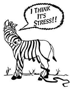 Zebra-Lossing-Strips2